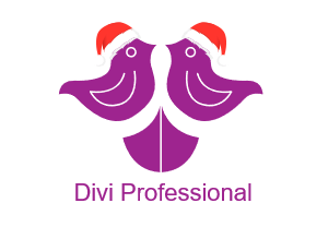 Divi Professional Coupons and Promo Code